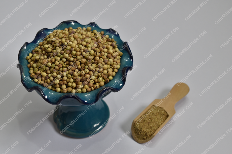 Appearance of coriander