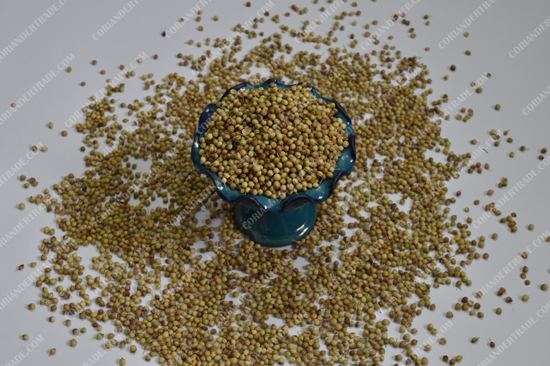 health properties of coriander and its seeds