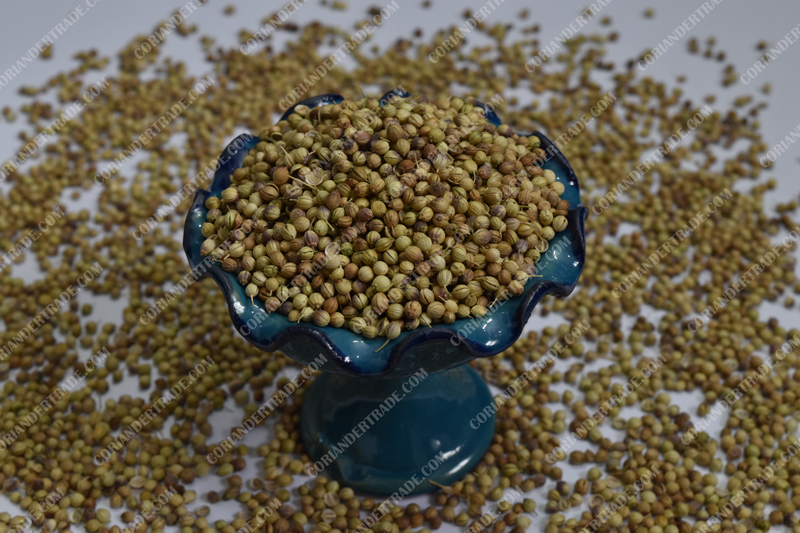 Organic Whole Coriander Seed for Sale